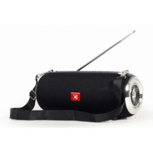 Prenosivi Bluetooth zvučnik sa antenom + handsfree 2x5W, FM, USB, SD, AUX